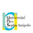 IUT-nice-logo
